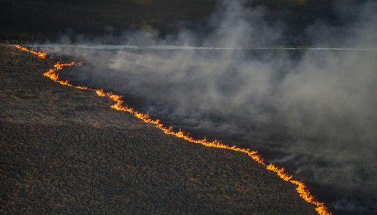 チェルノブイリ原発付近、大規模な森林火災が発生 放火の疑いも(画像)