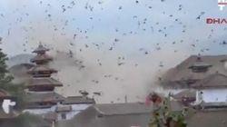 ネパール大地震 逃げ惑う鳥の大群、崩れる建物......その瞬間をカメラが捉えた(動画)