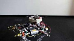 4足で歩き飛ぶこともできるドローン、最近見たロボット動画中では一番かわいい