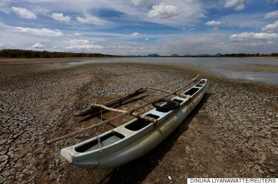 スリランカがこの40年間で最悪の干魃「生き残る道がありません」