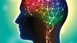 シナプスへの光遺伝学的操作を使って記憶を追跡する