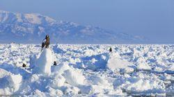 【大寒の天気】北海道と小笠原諸島の気温差は40度