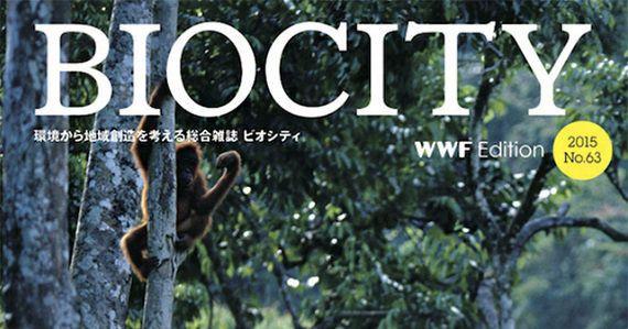 森林セミナー開催報告:消えた熱帯林とプランテーション~持続可能な私たちの暮らしと企業の調達