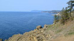 能登半島、ミゾゴイの生きる里山の保全を要請