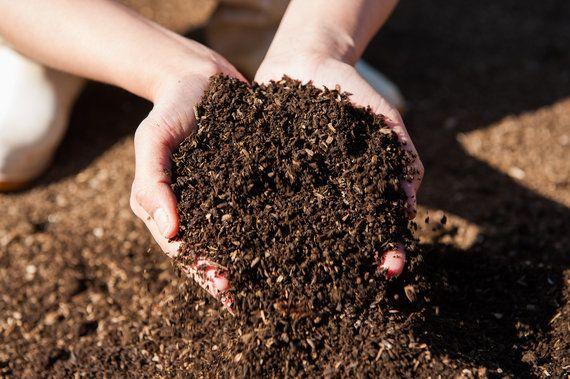 障がい者が人の健康を「支える」側に、農薬・化学肥料不使用のコールドプレスジュース