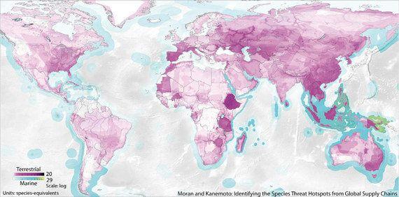 消費・生産活動が絶滅危惧種に及ぼす影響の視覚化に成功