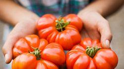年初に考える「農協」問題 生命線は「減反制度」と「兼業農家」