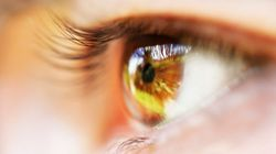 相手の目を見ないのは、言葉に耳を傾けていない以上の情報喪失
