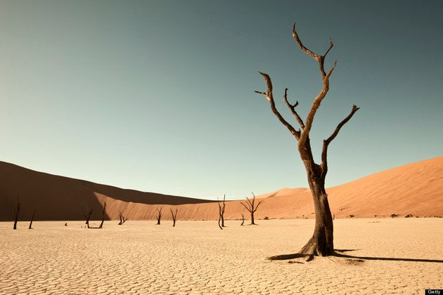 「本当とは思えない風景」の画像集