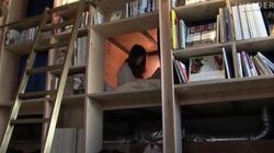 「泊まれる本屋」に海外から熱い視線 東京のBOOK AND