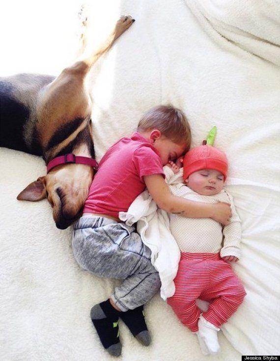 犬と男の子が仲よくお昼寝 可愛すぎるコンビに妹の赤ちゃんが加わる(画像)
