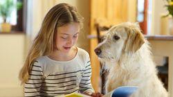 「セラピードッグ」が子供の読む力を向上させる