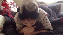 猫、お姉さんの頭にしがみついて、◯◯するニャア。【動画】