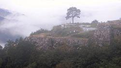 天空の城「竹田城」の一本松、