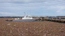 銚子で大量のゴミが港を埋め尽くす 鬼怒川決壊から漂着【画像】