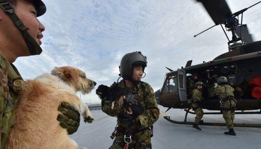 自衛隊員「安心のため救助続ける」