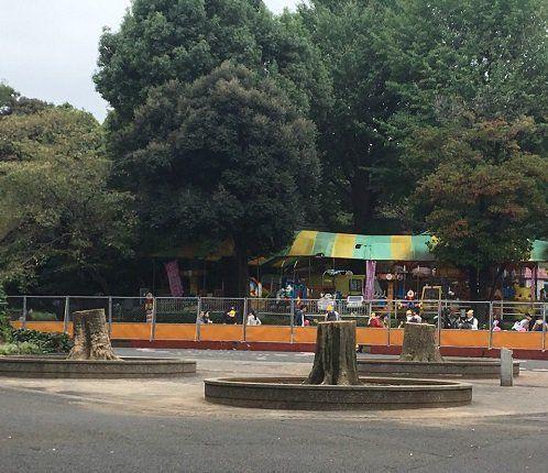 ●動物園前にあった3本の大木も伐られた。奥のこども遊園地はすでに閉鎖された=酒井美和子さん撮影