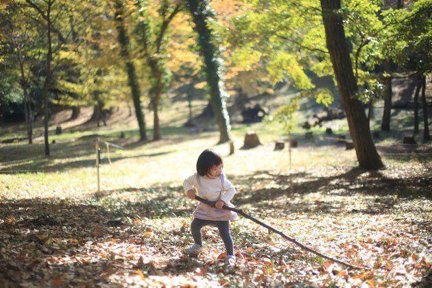 枯れ葉や枝を拾って自然の中で大はしゃぎのおてんばガール
