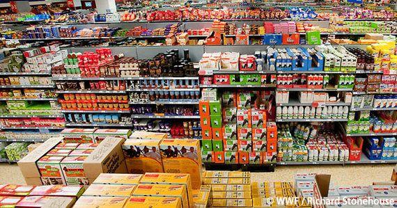 気候変動対策No.1の食品関連企業は?「企業の温暖化対策ランキング」第3弾