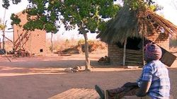 ジンバブエ:夫と死別の女性