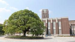 京都大学「霊長類研究所」を詐欺的と訴えた「新証拠」--内木場重人