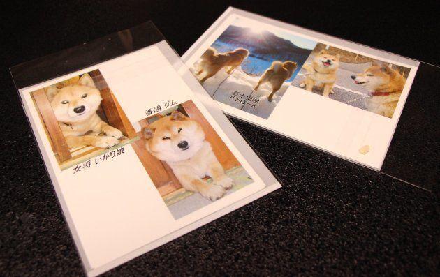 宿泊者には、新田さんからメッセージ付きのポストカードも届く。こうした2人の手厚いおもてなしも、人が集うようになったきっかけになっただろう。