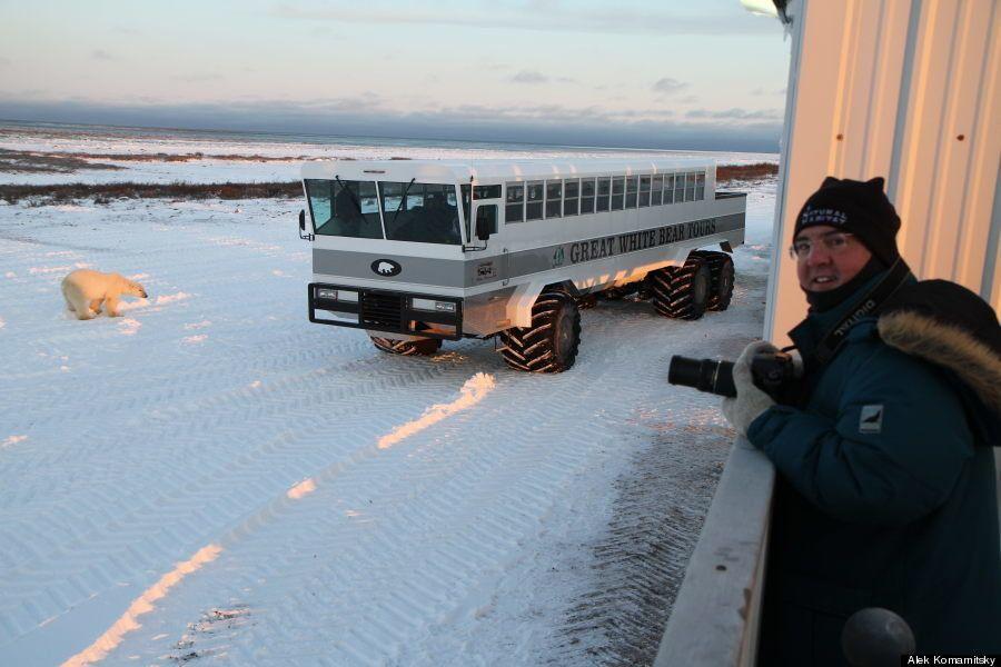 ホッキョクグマに会えるカナダの移動式ホテルがすごい(・(ェ)・)