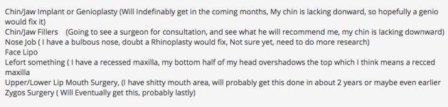 Lookism.netのユーザーが投稿した、「これから受けようと思っている整形手術のリスト」。あごのインプラント、花の整形、顔の脂肪吸引など、様々な部位が書かれている
