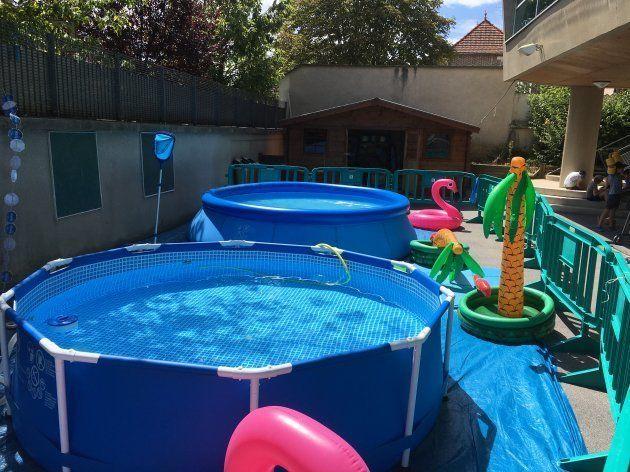 小学校の学童プール:水泳監視員資格を持つスタッフが管理。目的は泳法を学ぶことではなく、水の中で楽しむこと。小学生のプール活動は監視員1人につき1回20分・児童8人、合計児童40人までと決められている。