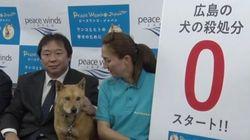 広島県、犬の殺処分ゼロへ。NPOが全頭引き取り