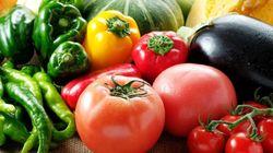 保存に適した温度は?夏に知っておきたい食材保存のコツ