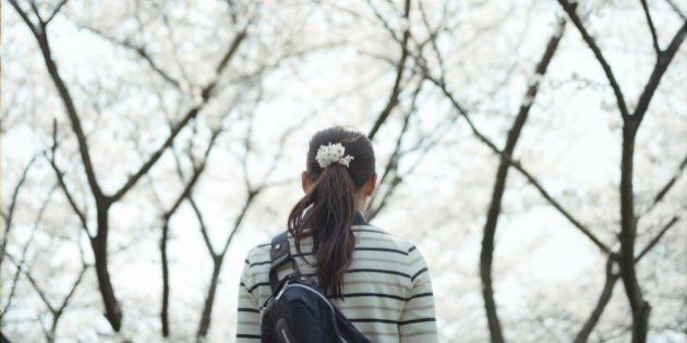 Young girl walking under sakura blossom, Osaka,