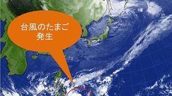 えっ?冬なのに台風のたまご発生