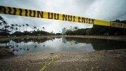 ワイキキビーチが遊泳禁止に 大量の汚水が海に流入(画像)
