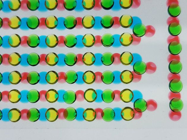 3Dバイオプリンターで印刷したヒドロゲルの液滴。塩分濃度の高いゲル(赤色)と低いゲル(青色)を1枚の基板上に、カチオン選択性のゲル(緑色)とアニオン選択性のゲル(黄色)をもう1枚の基板上に印刷した。これらを重ね合わせて画像のように液滴を互いに接触させると、イオン勾配により電圧が生じる。