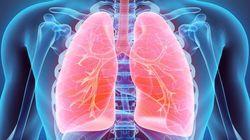 呼吸における機械刺激伝達の役割
