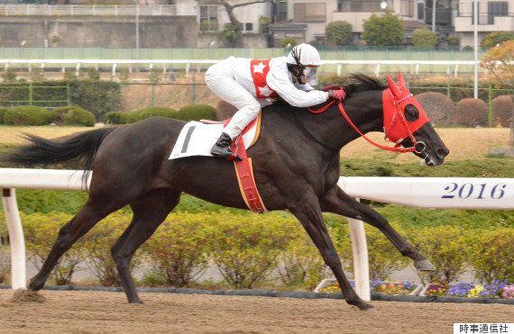 藤田菜七子騎手、初勝利「馬にはありがとうの一言です」