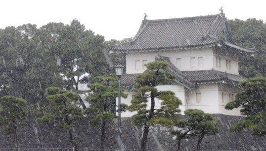 冬の便りが舞った東京都心の様子は?