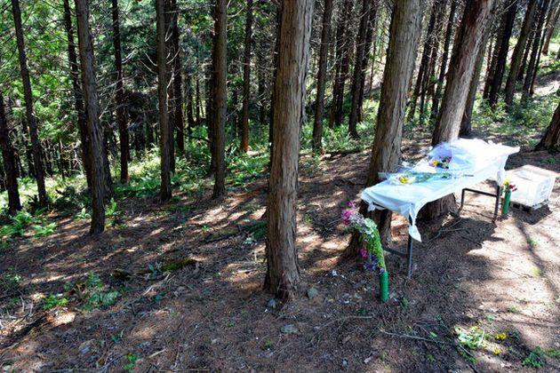 被害女児の遺体が遺棄された山林の斜面。一審判決後、新しい花束が手向けられていた=2016年撮影、茨城県常陸大宮市