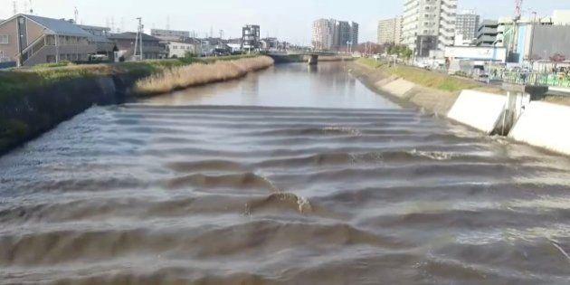 【福島県沖地震】宮城県多賀城市、逆流する砂押川 Twitterに動画が投稿される