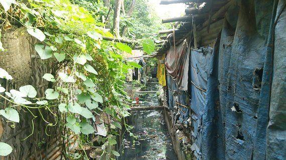 6億6300万人が汚れた水を飲む現状 水と衛生に関する日本と世界の格差