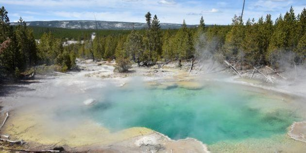 A view of a hot spring at the Norris Geyser Basin at Yellowstone National Park on May 12, 2016.Yellowstone,...