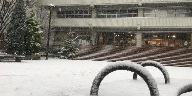 雪に覆われる公園(東京・千代田区)=2018年1月22日
