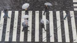 都心で大雪、新宿駅などで入場規制 首都圏の電車の運行・遅延情報一覧