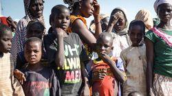 ナイジェリアで女性や子ども172人拉致 ボコ・ハラムの犯行か