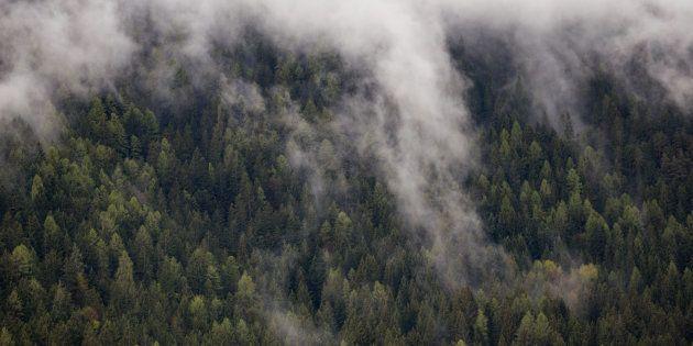 Photo Taken In Bolzano - Bozen,