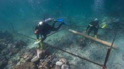 ヴァスコ・ダ・ガマの沈没船を発見 大航海時代の貴重な財宝もみつかる