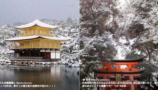 金閣寺から伏見稲荷まで。雪化粧した京都の美しさに息を飲む(画像集)