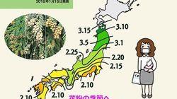 もうじき花粉の季節 対策は厳寒のうちに