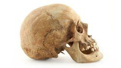 9000年前のティーンエージャーの顔が復元されました
